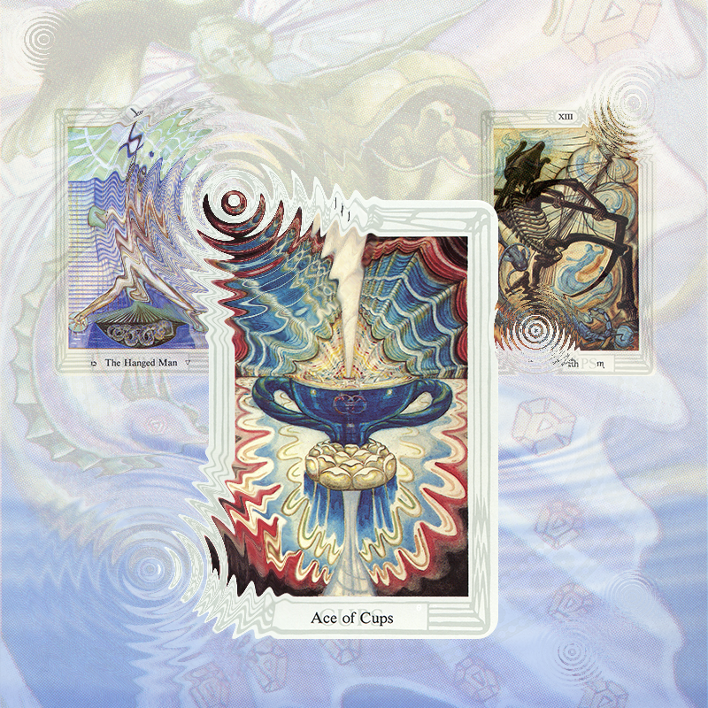 Ace of Cups Creative